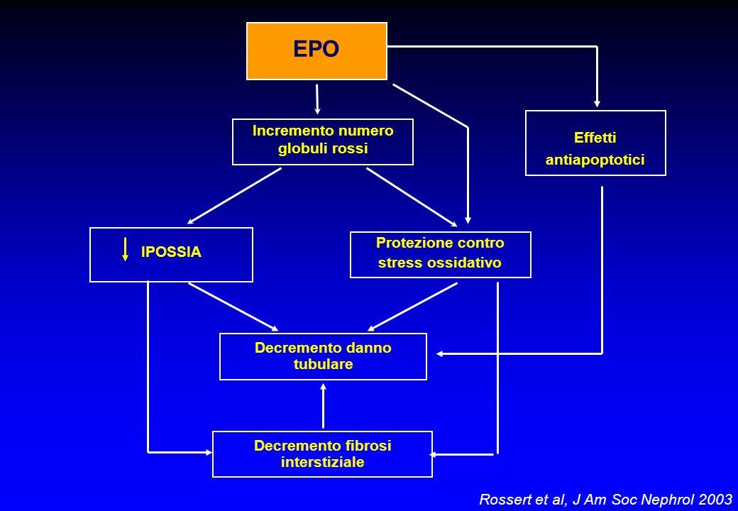 EPO Incremento numero globuli rossi Effetti antiapoptotici Protezione contro stress ossidativo Decremento danno tubulare Decremento fibrosi interstizi