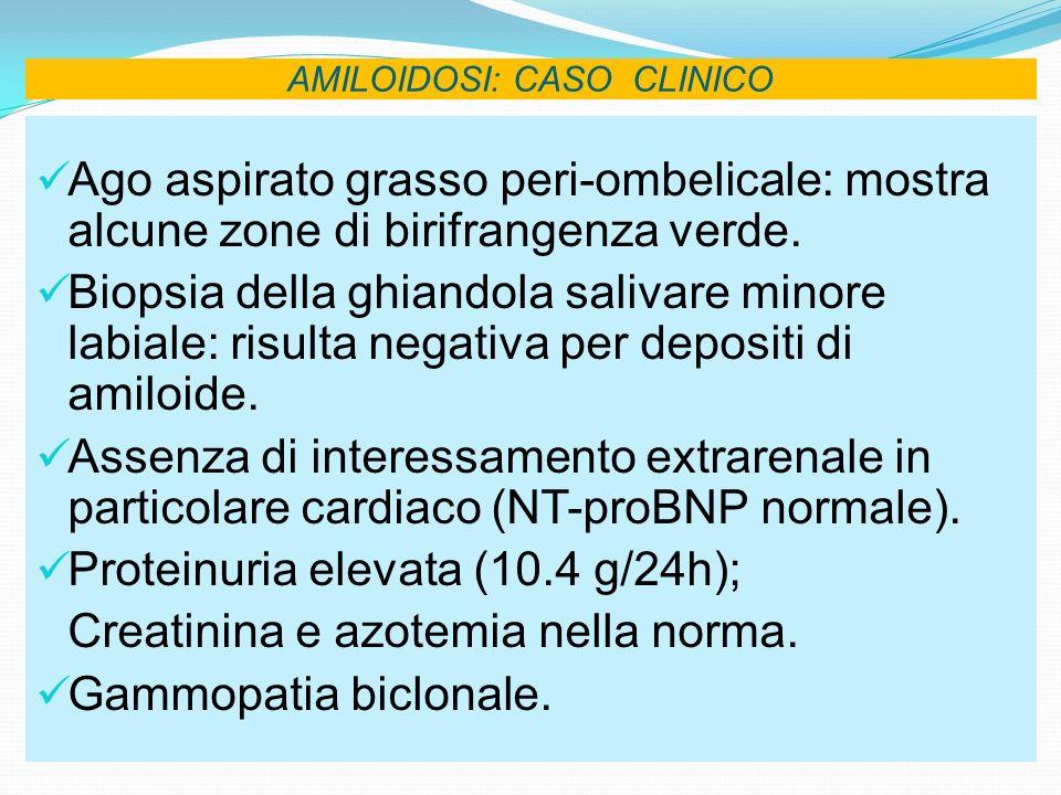 AMILOIDOSI: CASO CLINICO Ago aspirato grasso peri-ombelicale: mostra alcune zone di birifrangenza verde. Biopsia della ghiandola salivare minore labia