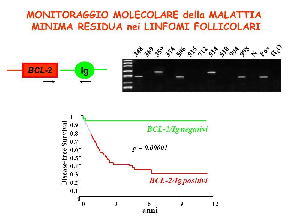 MONITORAGGIO MOLECOLARE della MALATTIA MINIMA RESIDUA nei LINFOMI FOLLICOLARI BCL-2 Ig 1 anni 0 0.1 0.3 0.2 0.9 0.8 0.7 0.6 0.4 0.5 012963 Disease-fre
