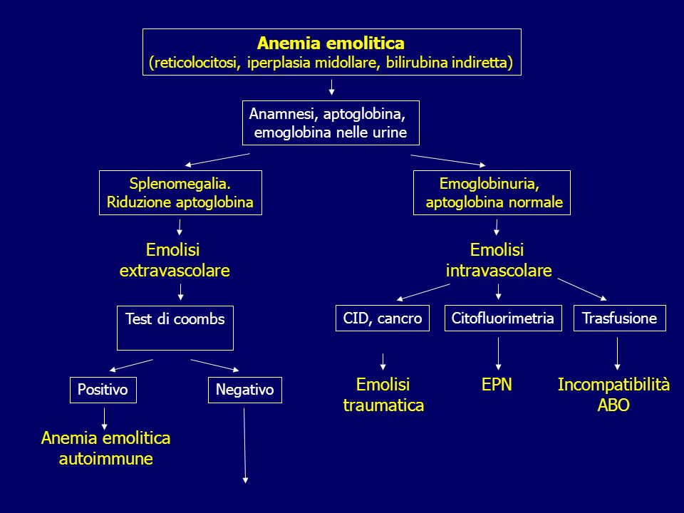 Anemia emolitica (reticolocitosi, iperplasia midollare, bilirubina indiretta) Anamnesi, aptoglobina, emoglobina nelle urine Splenomegalia. Riduzione a