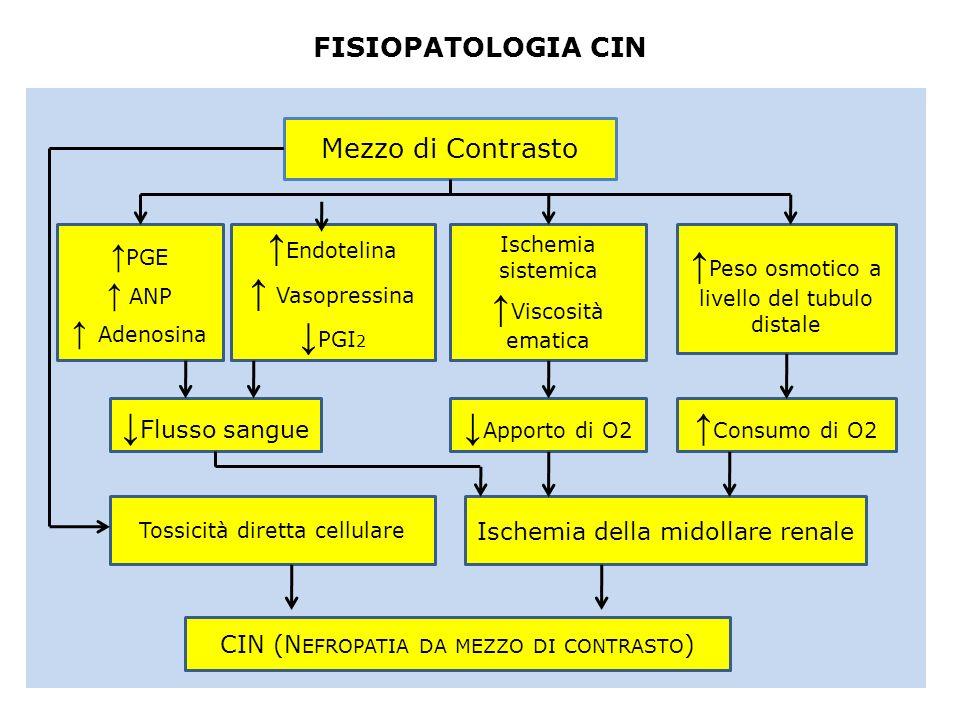 FISIOPATOLOGIA CIN Mezzo di Contrasto PGE ANP Adenosina Endotelina Vasopressina PGI 2 Ischemia sistemica Viscosità ematica Peso osmotico a livello del