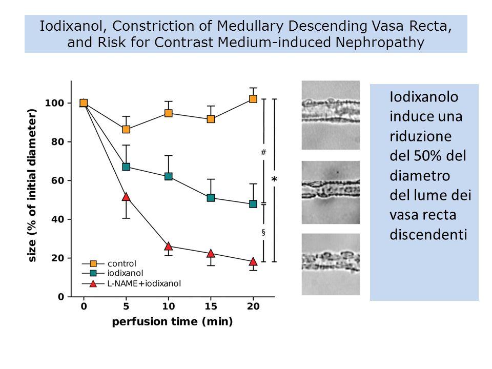 Iodixanol, Constriction of Medullary Descending Vasa Recta, and Risk for Contrast Medium-induced Nephropathy Iodixanolo induce una riduzione del 50% d