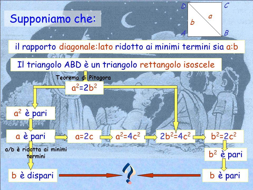 Supponiamo che: b a A D C B 2b2=4c22b2=4c2 Il triangolo ABD è un triangolo rettangolo isoscele a 2 =2b 2 a 2 è pari a è pari b è dispari a/b è ridotta ai minimi termini a=2ca2=4c2a2=4c2 Teorema di Pitagora b2=2c2b2=2c2 b 2 è pari b è pari