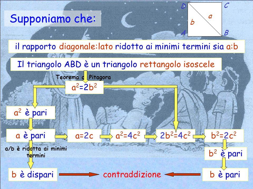 il rapporto diagonale:lato ridotto ai minimi termini sia a:b Supponiamo che: b a A D C B Il triangolo ABD è un triangolo rettangolo isoscele a 2 è pari a è pari b è dispari a/b è ridotta ai minimi termini a=2ca2=4c2a2=4c2 2b2=4c22b2=4c2 b2=2c2b2=2c2 b 2 è pari b è pari a 2 =2b 2 Teorema di Pitagora