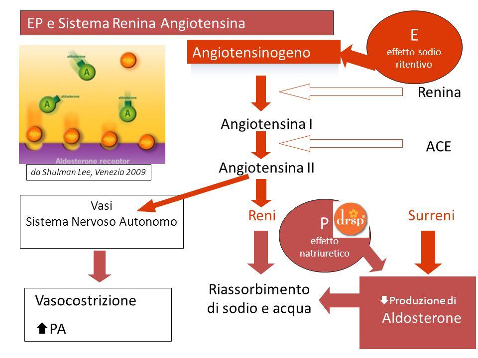 Angiotensinogeno Angiotensina I Angiotensina II Reni Riassorbimento di sodio e acqua Vasocostrizione PA ACE Renina Vasi Sistema Nervoso Autonomo Surre