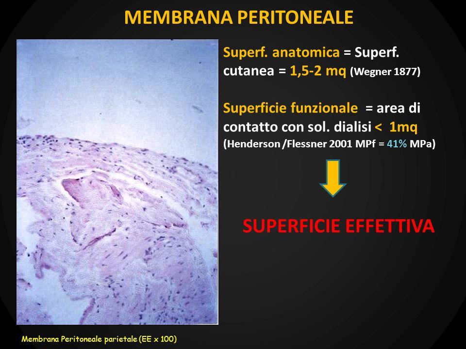flusso splancnico: 20-25% della portata cardiaca (circa 1200 ml/min) COMPARTO EMATICO (non esiste fisicamente): complesso di strutture anatomiche e funzionali interposte tra sangue e soluzione dialisi MEMBRANA PERITONEALE DIALITICA volume di soluzione dialisi nella cavita peritoneale COMPARTO DIALITICO IL PERITONEO: SISTEMA DIALIZZANTE