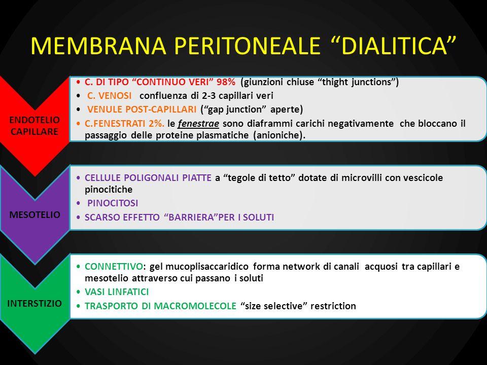 MODELLO MATEMATICO MEMBRANA PERITONEALE.