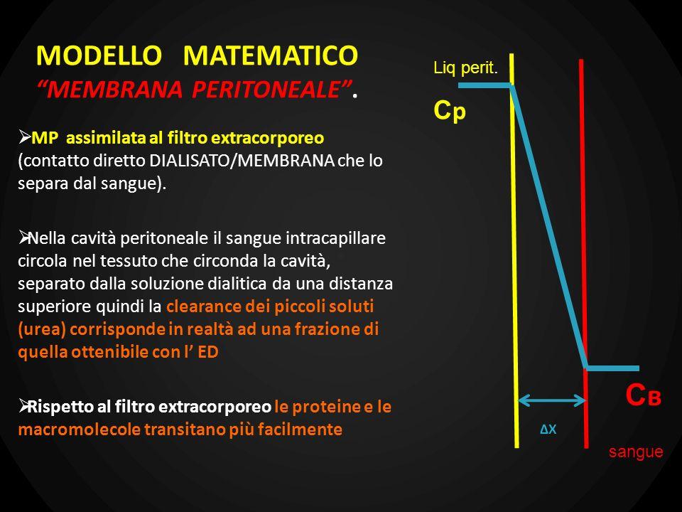MODELLO MATEMATICO MEMBRANA PERITONEALE. MP assimilata al filtro extracorporeo (contatto diretto DIALISATO/MEMBRANA che lo separa dal sangue). Nella c