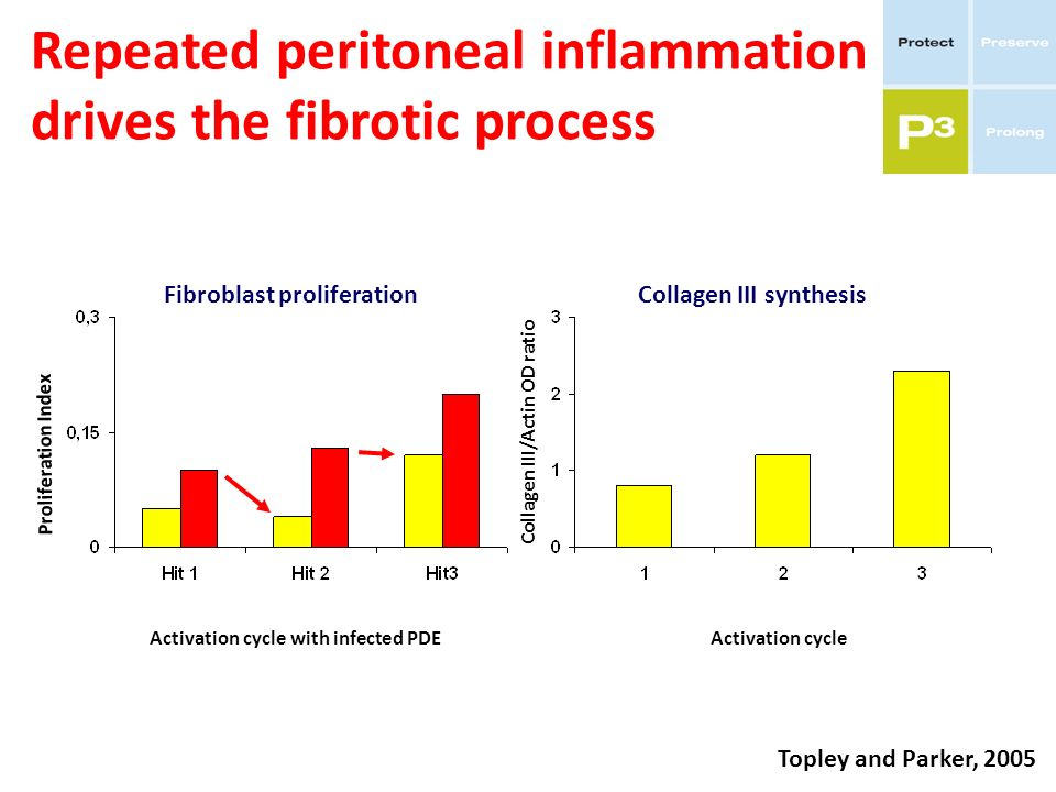 Repeated peritoneal inflammation drives the fibrotic process Fibroblast proliferation Activation cycle with infected PDE Proliferation Index Topley an