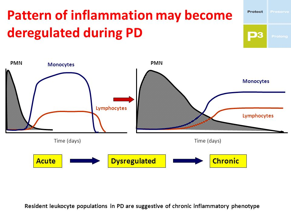 Pattern of inflammation may become deregulated during PD PMN Monocytes Lymphocytes PMN Monocytes Lymphocytes Time (days) Resident leukocyte population