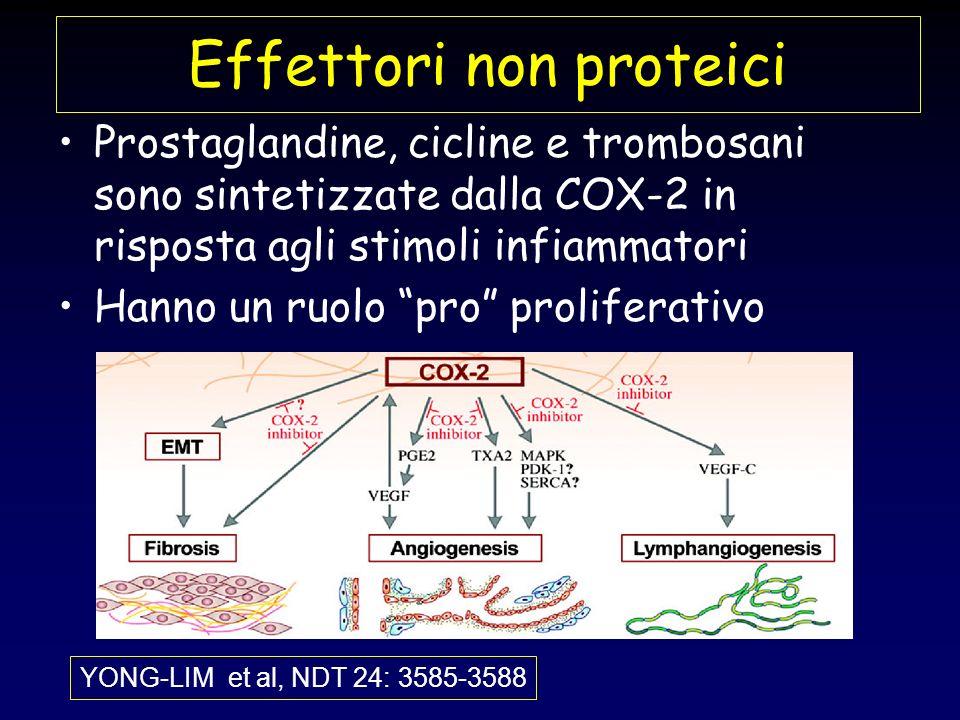 Effettori non proteici Prostaglandine, cicline e trombosani sono sintetizzate dalla COX-2 in risposta agli stimoli infiammatori Hanno un ruolo pro pro