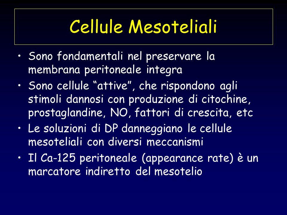 Cellule Mesoteliali Sono fondamentali nel preservare la membrana peritoneale integra Sono cellule attive, che rispondono agli stimoli dannosi con prod