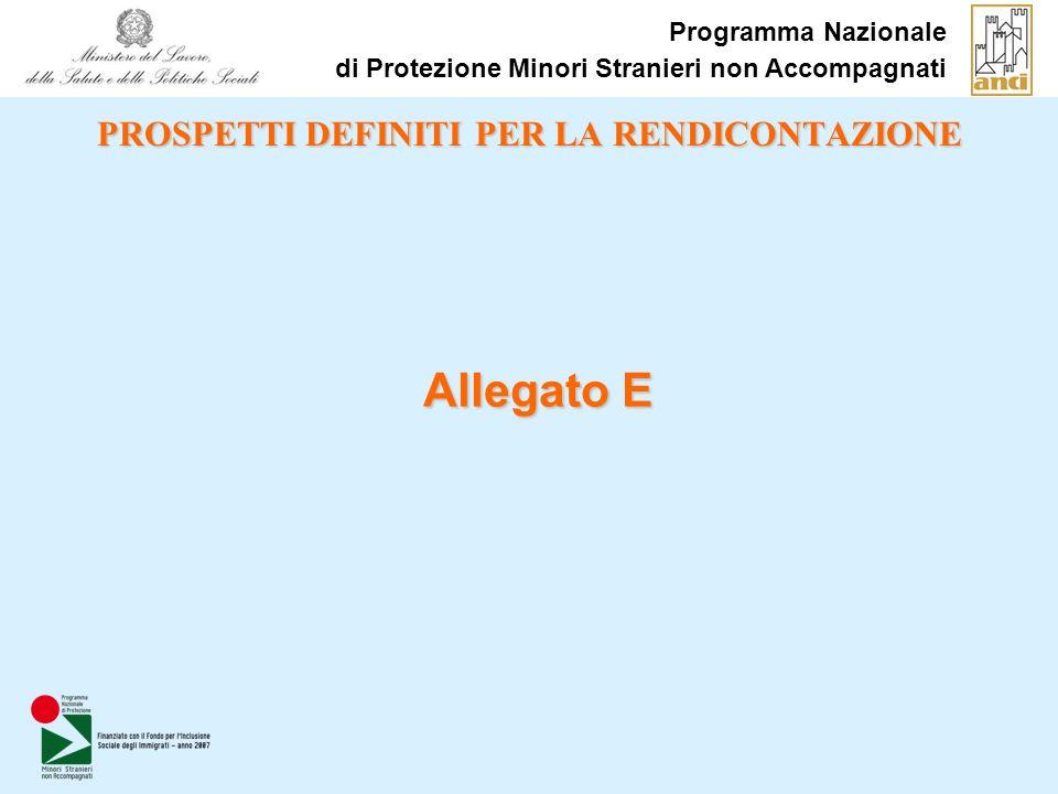 PROSPETTI DEFINITI PER LA RENDICONTAZIONE Allegato E Programma Nazionale di Protezione Minori Stranieri non Accompagnati
