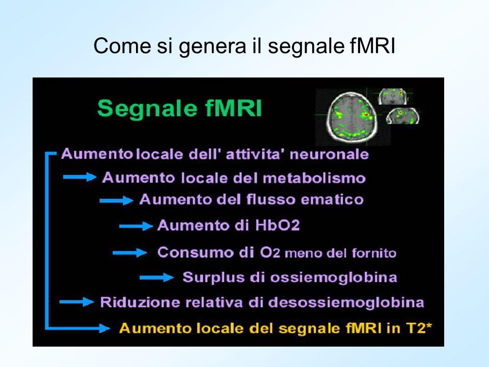 Come si genera il segnale fMRI