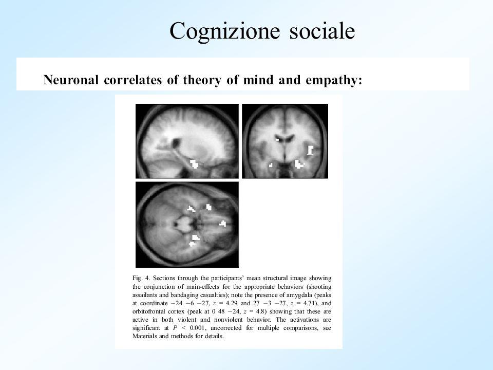 Cognizione sociale