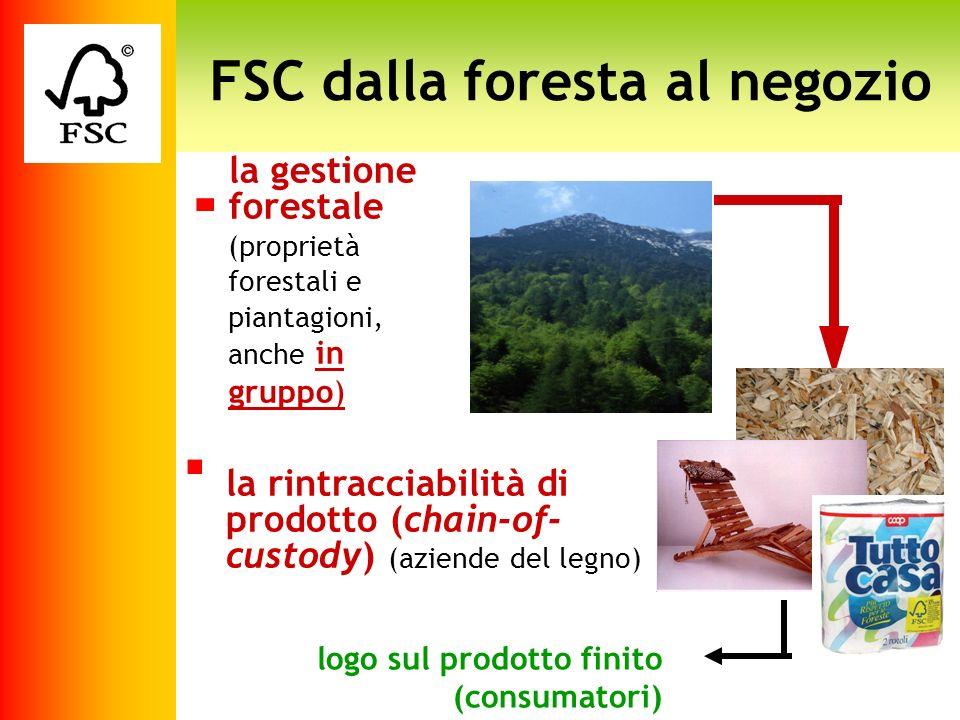 la gestione forestale (proprietà forestali e piantagioni, anche in gruppo) logo sul prodotto finito (consumatori) FSC dalla foresta al negozio la rint