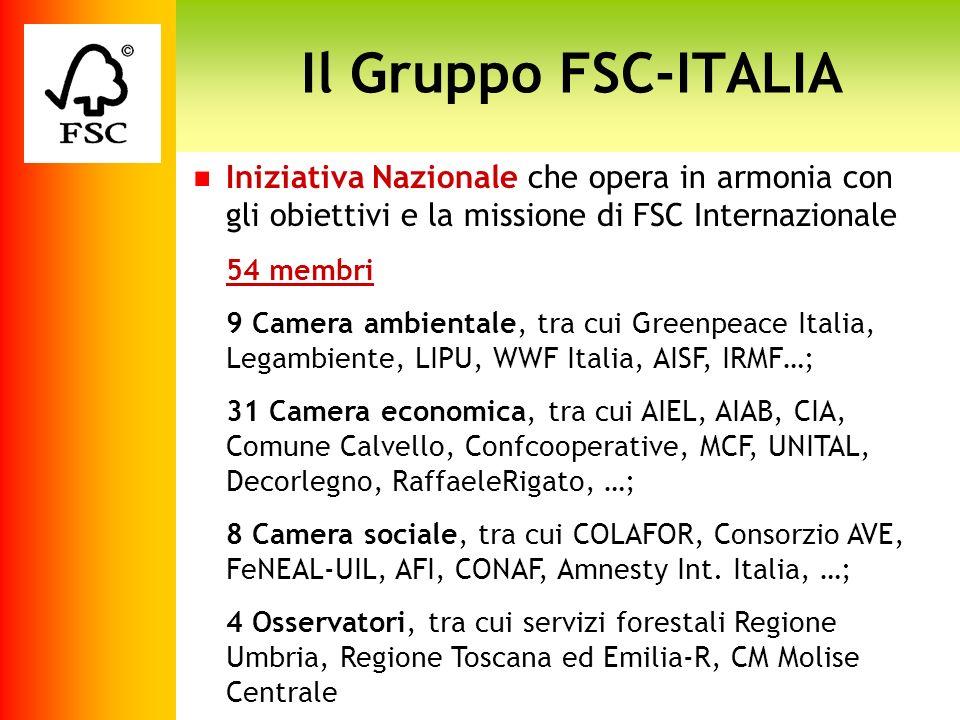 Iniziativa Nazionale che opera in armonia con gli obiettivi e la missione di FSC Internazionale 54 membri 9 Camera ambientale, tra cui Greenpeace Ital