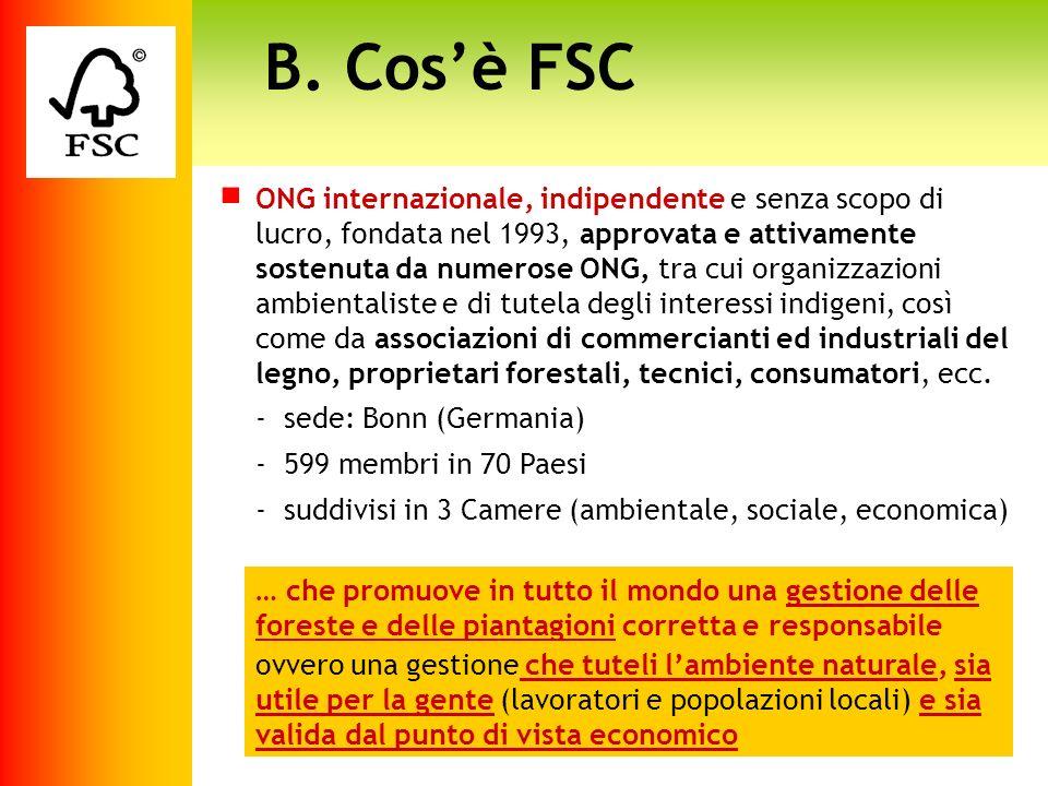 B. Cosè FSC ONG internazionale, indipendente e senza scopo di lucro, fondata nel 1993, approvata e attivamente sostenuta da numerose ONG, tra cui orga