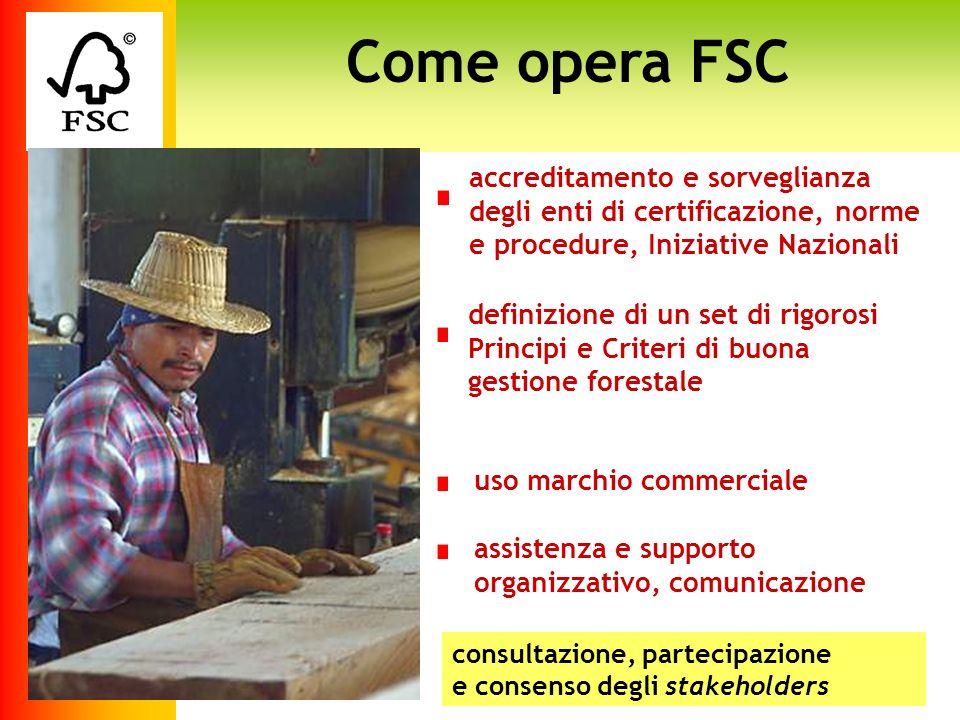 A Approccio di sistema Aspetti economici Benefici sociali Gli standard FSC di buona gestione forestale 1.