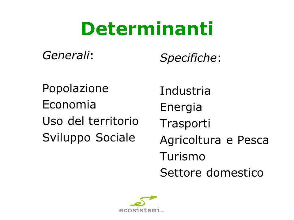 Determinanti Generali: Popolazione Economia Uso del territorio Sviluppo Sociale Specifiche: Industria Energia Trasporti Agricoltura e Pesca Turismo Settore domestico