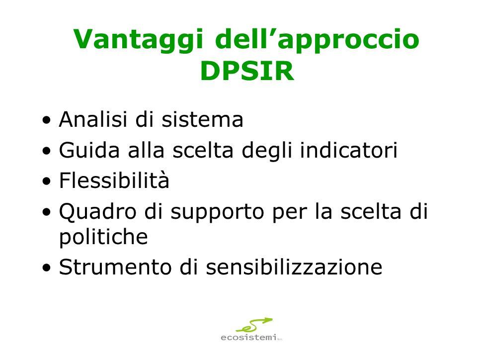 Vantaggi dellapproccio DPSIR Analisi di sistema Guida alla scelta degli indicatori Flessibilità Quadro di supporto per la scelta di politiche Strumento di sensibilizzazione