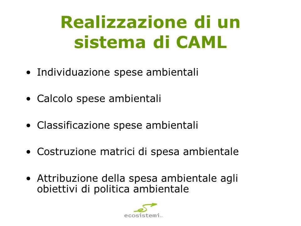 Realizzazione di un sistema di CAML Individuazione spese ambientali Calcolo spese ambientali Classificazione spese ambientali Costruzione matrici di spesa ambientale Attribuzione della spesa ambientale agli obiettivi di politica ambientale
