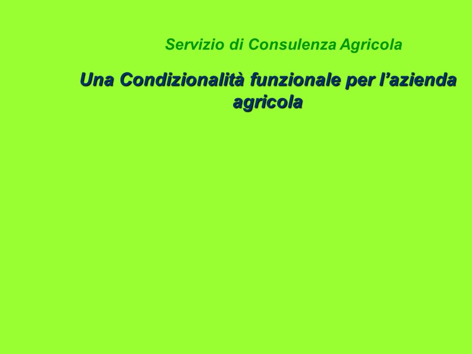 Una Condizionalità funzionale per lazienda agricola Servizio di Consulenza Agricola