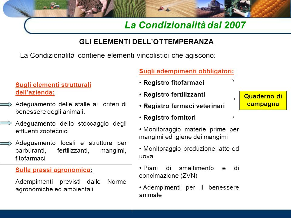 La Condizionalità dal 2007 GLI ELEMENTI DELLOTTEMPERANZA La Condizionalità contiene elementi vincolistici che agiscono: Sugli elementi strutturali dellazienda: Adeguamento delle stalle ai criteri di benessere degli animali.
