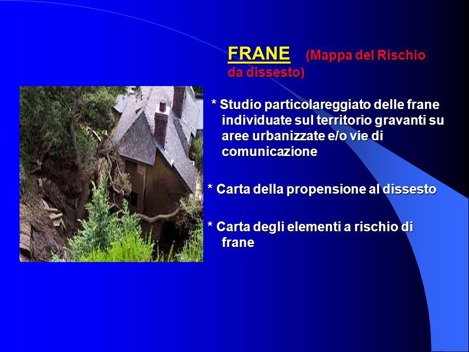 RISCHIO IDROGEOLOGICO ED IDRAULICO ALLUVIONI RISCHIO IDROGEOLOGICO ED IDRAULICO ALLUVIONI (Mappa del Rischio alluvioni) Studio delle aree inondabili:
