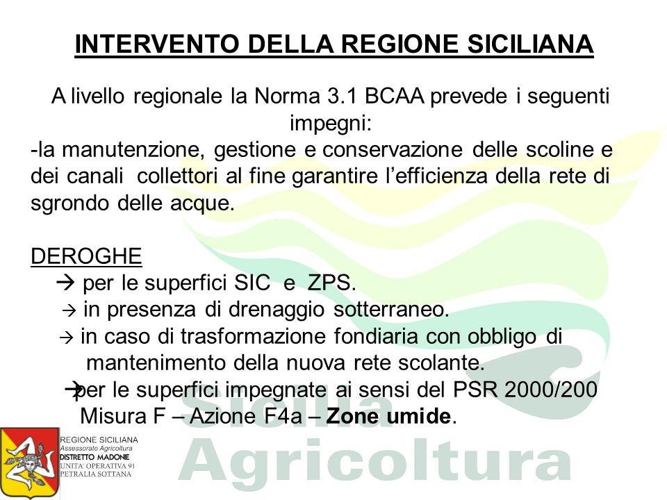 INTERVENTO DELLA REGIONE SICILIANA A livello regionale la Norma 3.1 BCAA prevede i seguenti impegni: -la manutenzione, gestione e conservazione delle