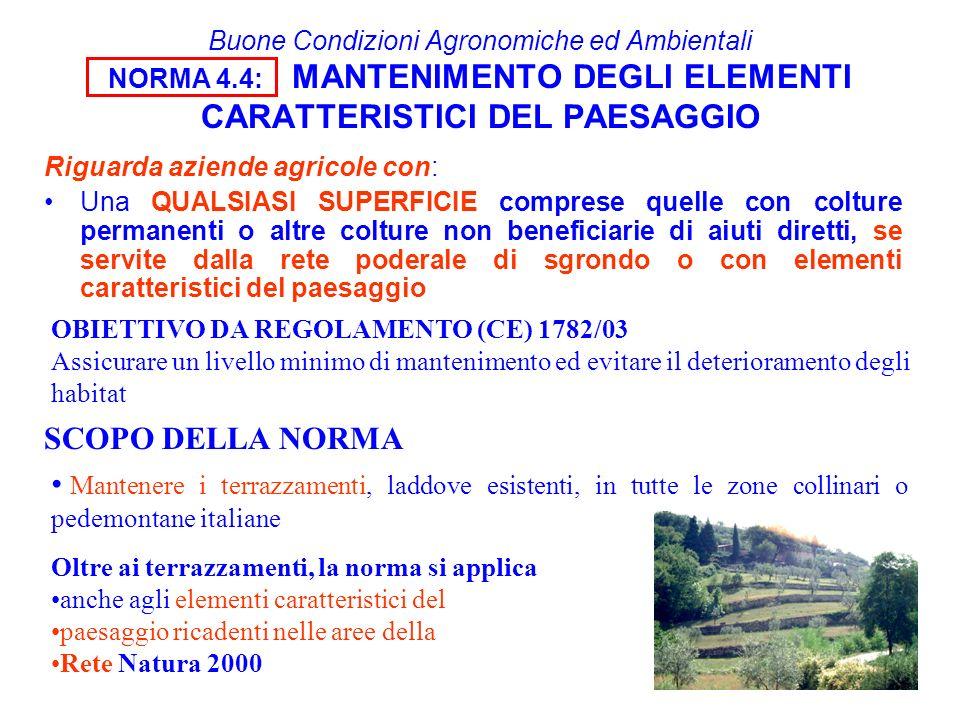 Buone Condizioni Agronomiche ed Ambientali NORMA 4.4: MANTENIMENTO DEGLI ELEMENTI CARATTERISTICI DEL PAESAGGIO Riguarda aziende agricole con: Una QUAL