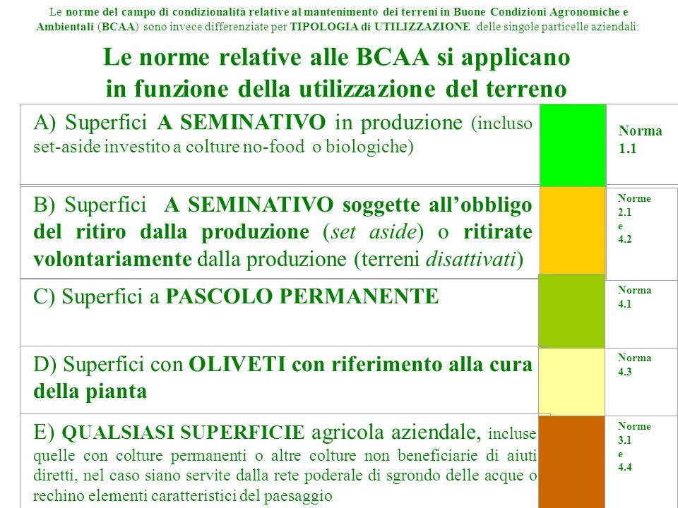Le norme relative alle BCAA si applicano in funzione della utilizzazione del terreno Le norme del campo di condizionalità relative al mantenimento dei