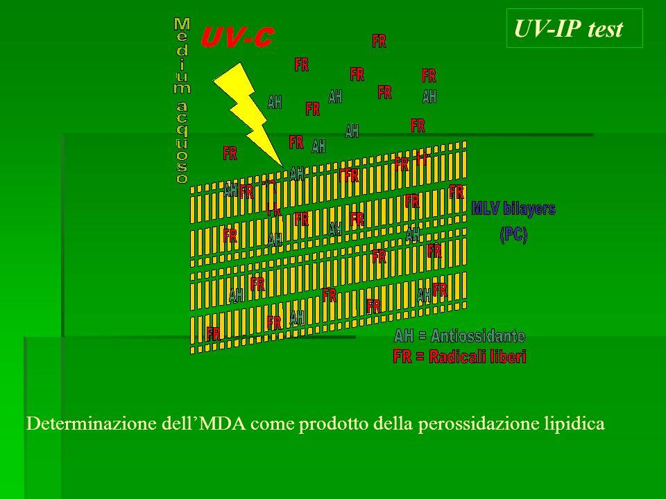 UV-IP test Determinazione dellMDA come prodotto della perossidazione lipidica