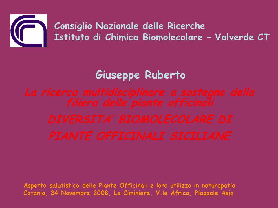 La ricerca multidisciplinare a sostegno della filiera delle piante officinali DIVERSITA BIOMOLECOLARE DI PIANTE OFFICINALI SICILIANE Giuseppe Ruberto