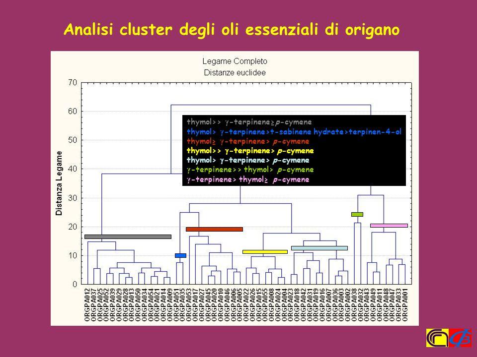 Analisi cluster degli oli essenziali di origano thymol>> -terpinenep-cymene thymol> -terpinene>t-sabinene hydrate>terpinen-4-ol thymol -terpinene> p-c