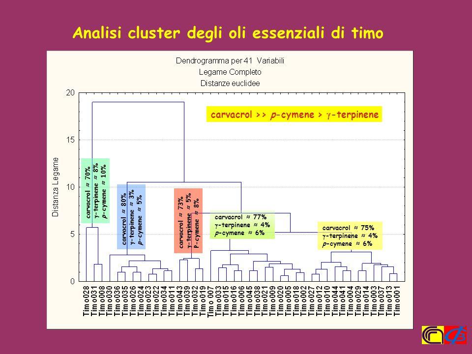 Analisi cluster degli oli essenziali di timo carvacrol >> p-cymene > -terpinene carvacrol 70% -terpinene 8% p-cymene 10% carvacrol 80% -terpinene 3% p