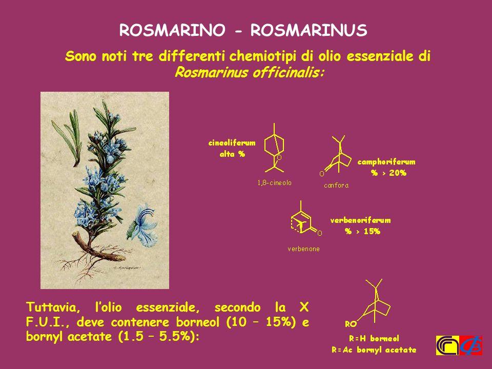Sono noti tre differenti chemiotipi di olio essenziale di Rosmarinus officinalis: Tuttavia, lolio essenziale, secondo la X F.U.I., deve contenere born