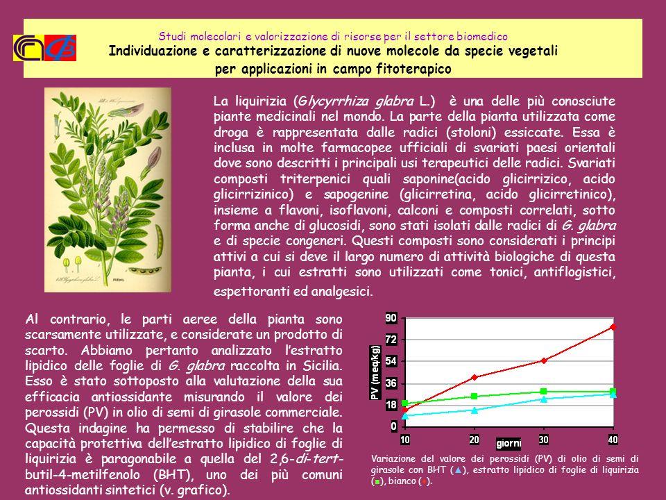 Studi molecolari e valorizzazione di risorse per il settore biomedico Individuazione e caratterizzazione di nuove molecole da specie vegetali per appl