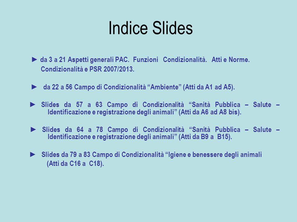 Indice Slides da 3 a 21 Aspetti generali PAC. Funzioni Condizionalità. Atti e Norme. Condizionalità e PSR 2007/2013. da 22 a 56 Campo di Condizionalit