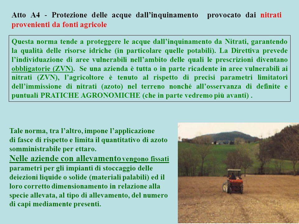 Atto A4 - Protezione delle acque dallinquinamento provocato dai nitrati provenienti da fonti agricole Questa norma tende a proteggere le acque dallinq
