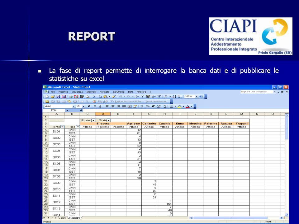 REPORT La fase di report permette di interrogare la banca dati e di pubblicare le statistiche su excel
