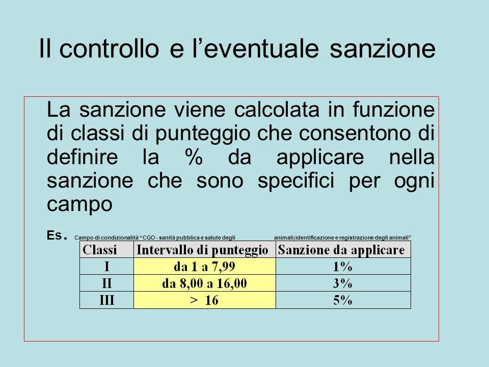 Il controllo e leventuale sanzione La sanzione viene calcolata in funzione di classi di punteggio che consentono di definire la % da applicare nella sanzione che sono specifici per ogni campo Es.