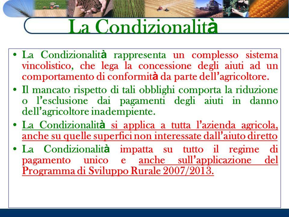 La Condizionalit à La Condizionalit à rappresenta un complesso sistema vincolistico, che lega la concessione degli aiuti ad un comportamento di confor