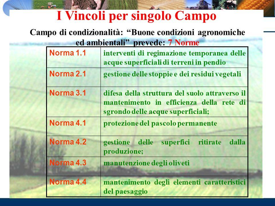 I Vincoli per singolo Campo Campo di condizionalità: Buone condizioni agronomiche ed ambientali prevede: 7 Norme Norma 1.1 interventi di regimazione t