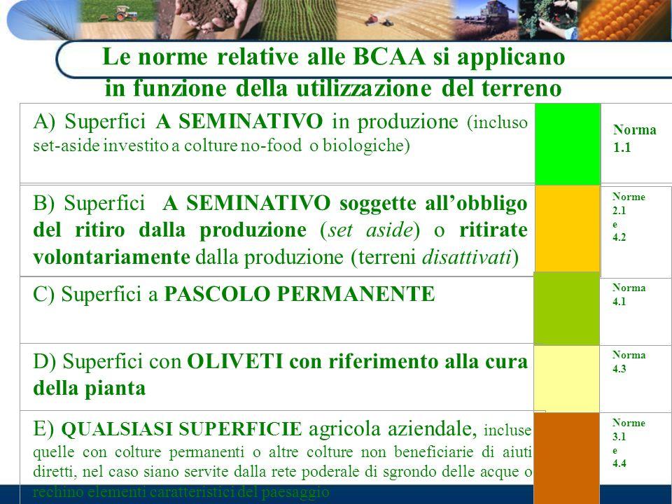 Le norme relative alle BCAA si applicano in funzione della utilizzazione del terreno A) Superfici A SEMINATIVO in produzione (incluso set-aside invest