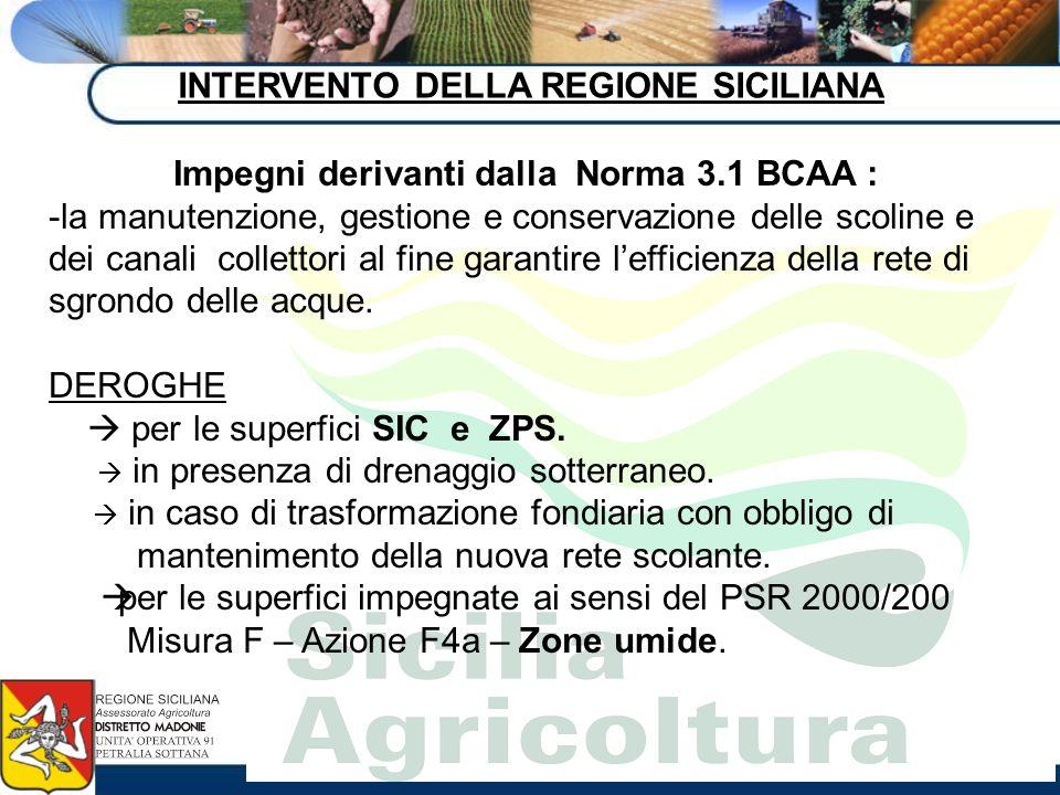 INTERVENTO DELLA REGIONE SICILIANA Impegni derivanti dalla Norma 3.1 BCAA : -la manutenzione, gestione e conservazione delle scoline e dei canali coll