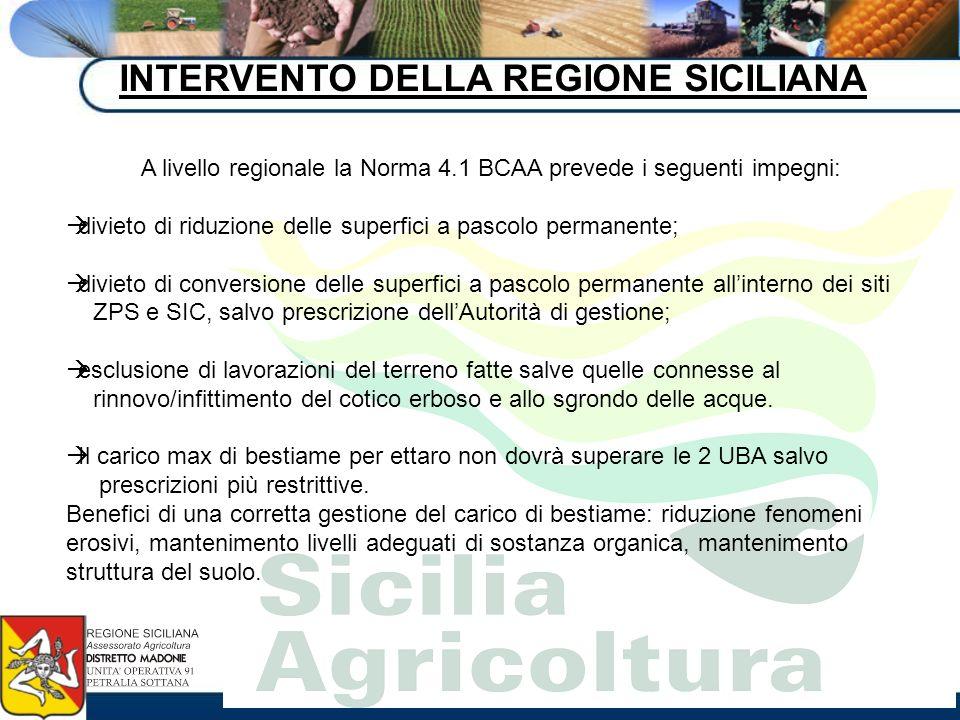 INTERVENTO DELLA REGIONE SICILIANA A livello regionale la Norma 4.1 BCAA prevede i seguenti impegni: divieto di riduzione delle superfici a pascolo pe