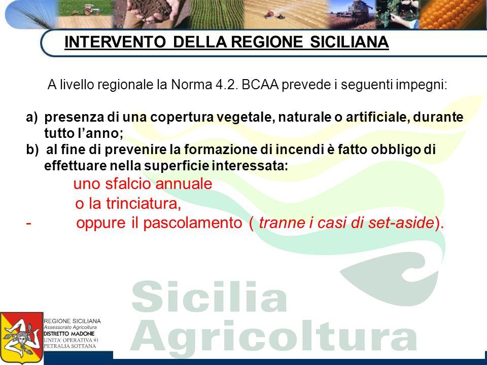 INTERVENTO DELLA REGIONE SICILIANA A livello regionale la Norma 4.2. BCAA prevede i seguenti impegni: a)presenza di una copertura vegetale, naturale o