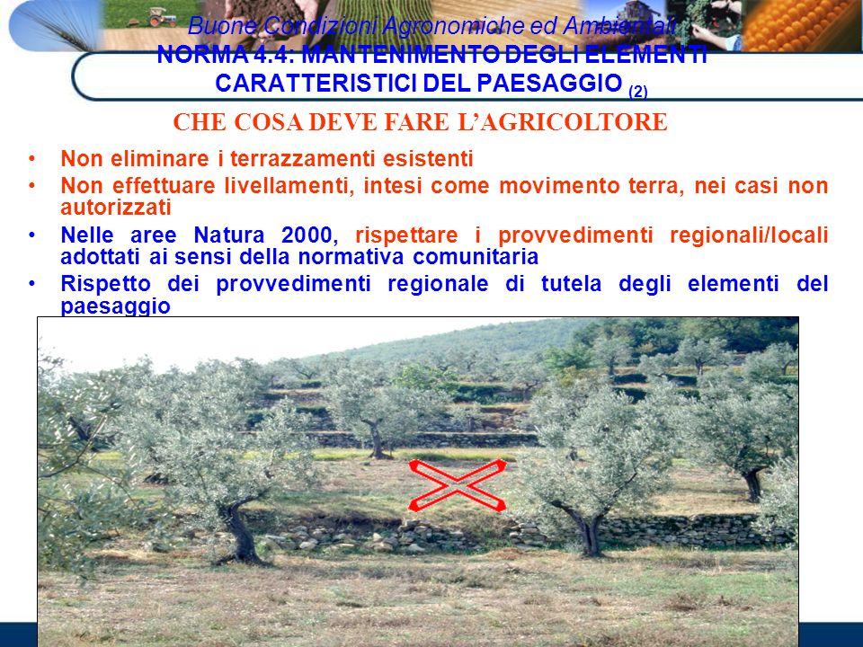 Non eliminare i terrazzamenti esistenti Non effettuare livellamenti, intesi come movimento terra, nei casi non autorizzati Nelle aree Natura 2000, ris