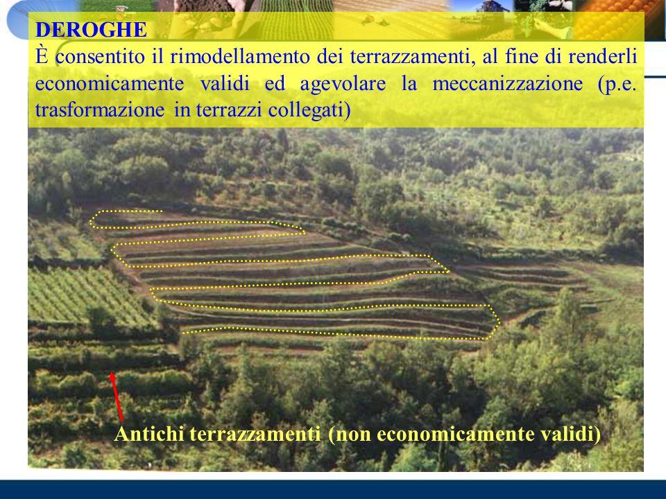 Antichi terrazzamenti (non economicamente validi) DEROGHE È consentito il rimodellamento dei terrazzamenti, al fine di renderli economicamente validi